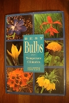 Best Bulbs for Temperate Climates Hobbs and Hatch