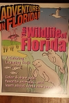 Wildlife of Florda coloring book