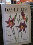 Daylilies by A. B. Stout
