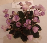 African Violet Rob's Pewter Bells in 2
