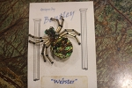 Bentley Jewelry Spider Pin called Webster
