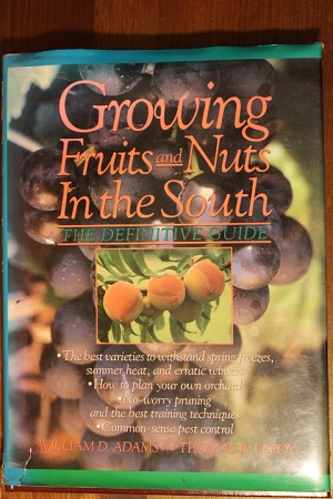 Growing Fruits and Nuts in the South
