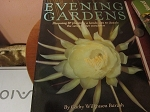 Evening Gardens Soft cover by Barash