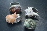 Silver Napkinring Natural shells  Set of 4 Assorted